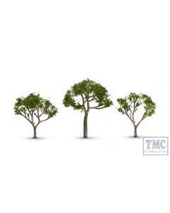 TR3525 Woodland Scenics Gum Tree 2 1/2Ó Ð 3 1/2Ó